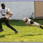 Police Exceed African American Hiring Quotas With Unexpected Canine Training Jobs